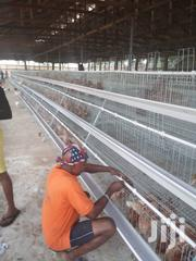 Chicken Cages | Farm Machinery & Equipment for sale in Dar es Salaam, Kinondoni