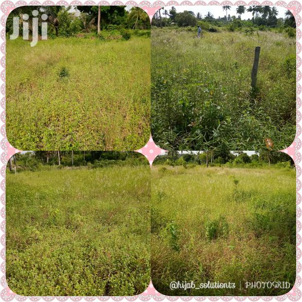Land And Plot For Sale