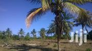 Plot Near the Beach at Mbutu Kigamboni | Land & Plots For Sale for sale in Dar es Salaam, Temeke