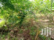 Plot For Sale | Land & Plots For Sale for sale in Dar es Salaam, Kinondoni