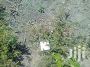 Surveyed Plot School/College 6 Acres Is For Sale At Bunju | Land & Plots For Sale for sale in Dar es Salaam, Kinondoni