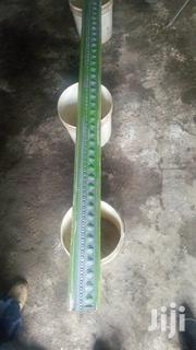 Fibreglass Molds For Making Gypsum Mouldings | Building Materials for sale in Dar es Salaam, Kinondoni