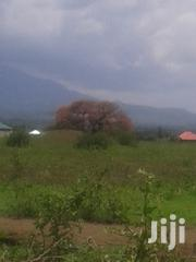 Prime Plot In Matevez Area Near Arusha Airport And A To Z Factory | Land & Plots For Sale for sale in Arusha, Arusha